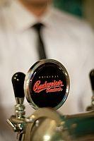 специальное пиво Budějovický Budvar Premier Select