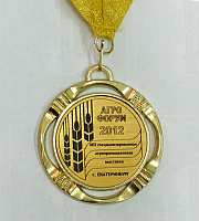 Медаль Вятич