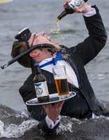 В Шотландии пиво защищает дельфинов