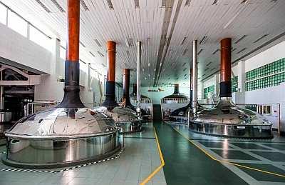 Волжский филиал ОАО «САН ИнБев» развивает  «Промышленный туризм»