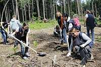 Сотрудники компании «САН ИнБев» участвовали в благоустройстве Битцевского парка