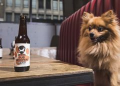 Пивоварня BrewDog выпустила IPA для собак