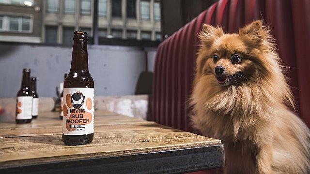 Пиво для собак Subwoofer IPA