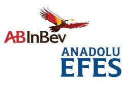 AB InBev Efes подвела итоги 2019 года